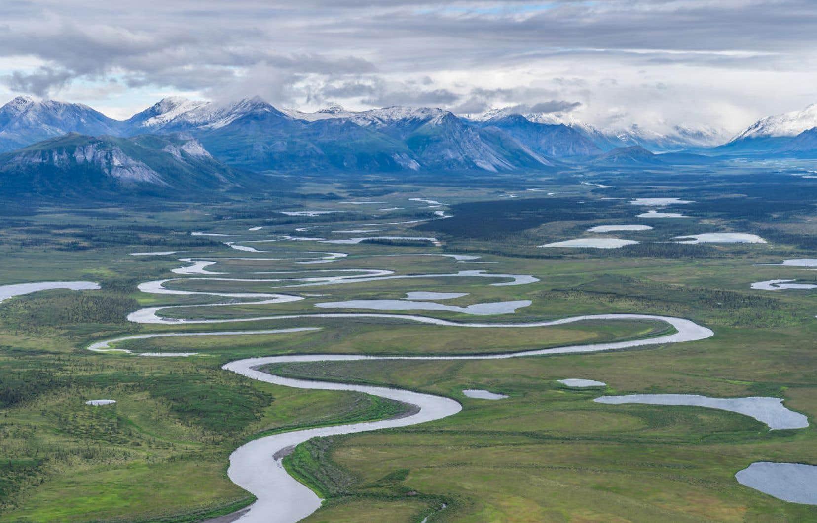 La réserve faunique en question: l'Arctic National Wildlife Refuge
