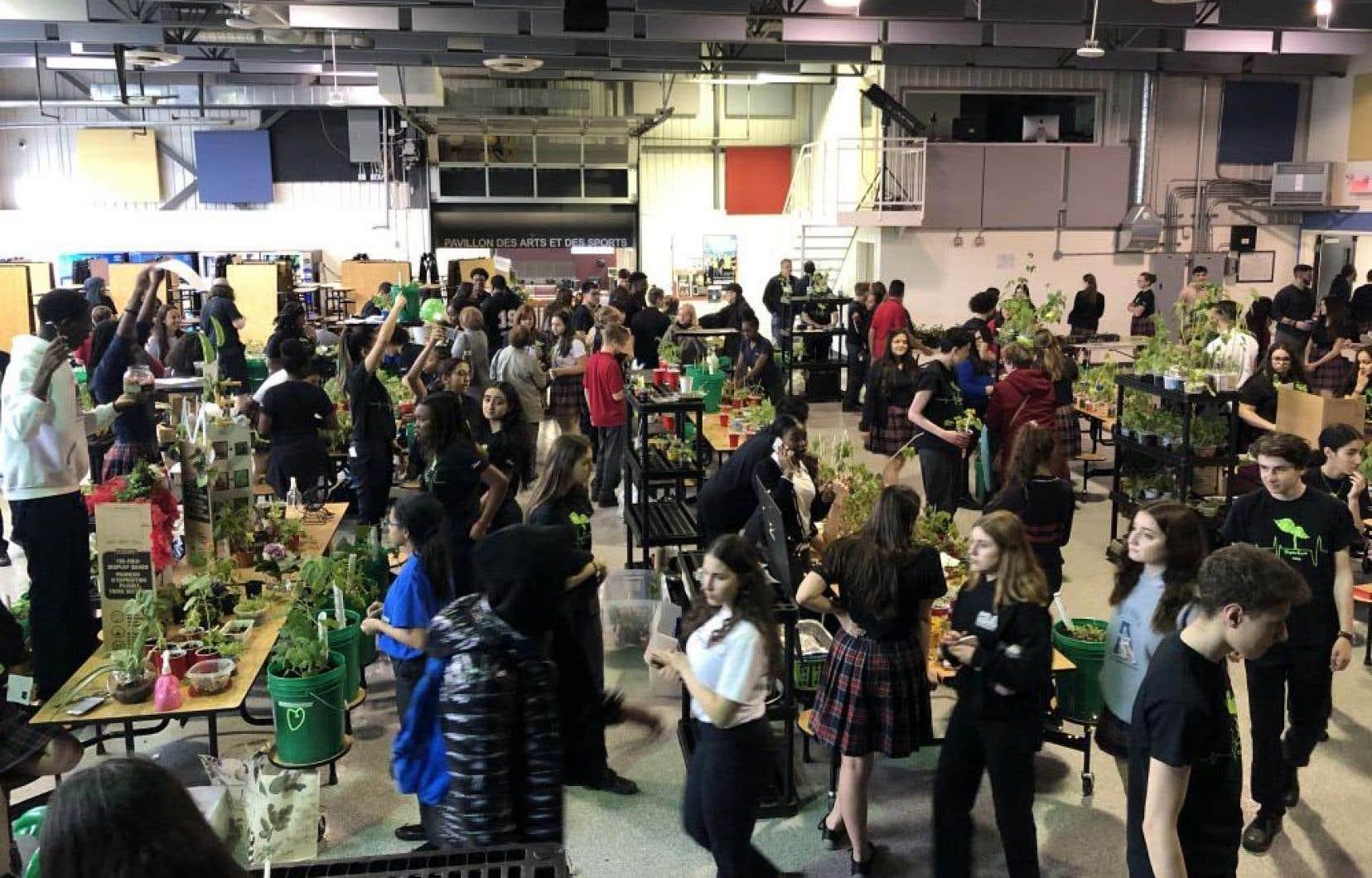 Le Collège d'Anjou vend des pousses de légumes chaque année en mai, que les élèves cultivent un peu partout dans l'école, une activité qui prend de plus en plus d'ampleur et lui permet d'amasser environ 5000$ annuellement.
