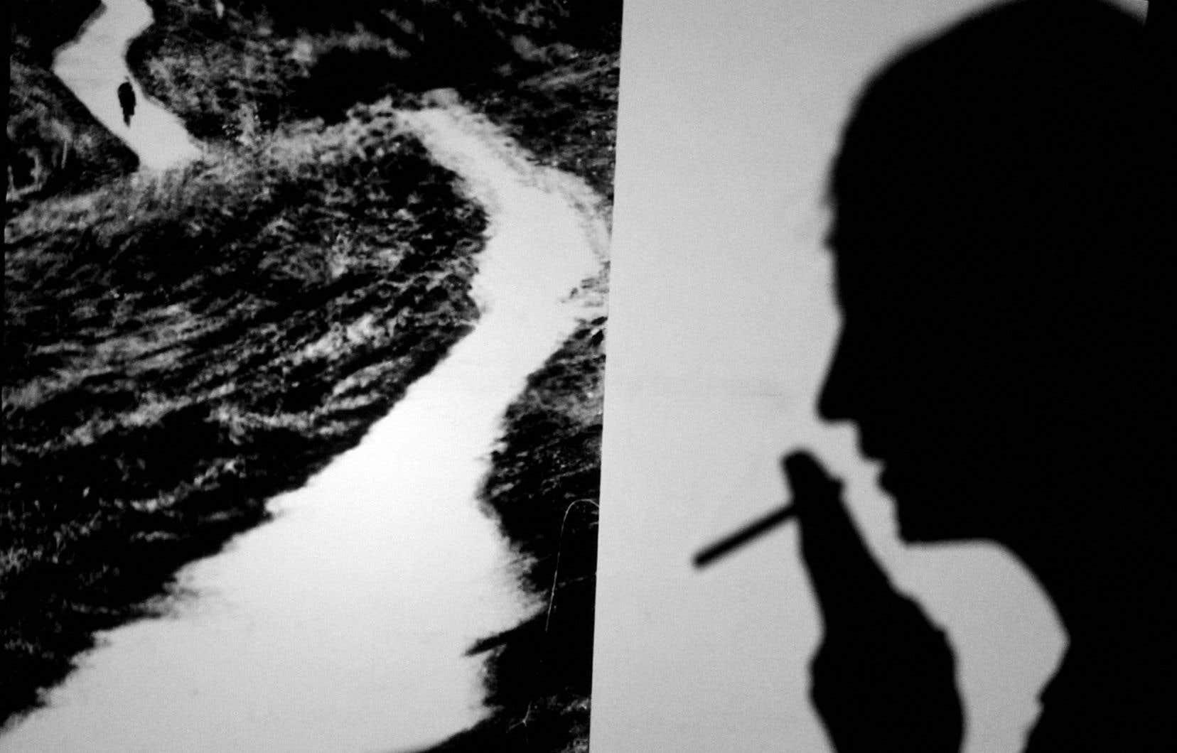 Jeux d'ombre du spectacle À l'infini nous rassembler de l'artiste multidisciplinaire Jean-François Spricigo