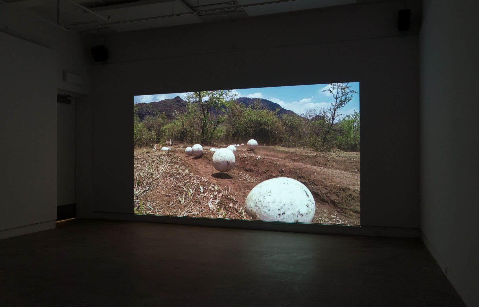 Miguel Angel Ríos, «Piedras Blancas», vue d'exposition, OPTICA, Montréal, 2019