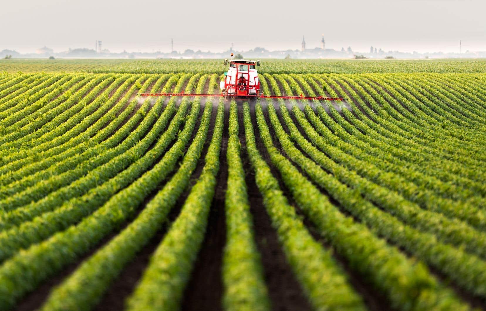 «L'Ordre autorise encore les agronomes à l'emploi des compagnies de pesticides à signer des autorisations, ça, c'est de l'ingérence», a relevé Louis Robert.