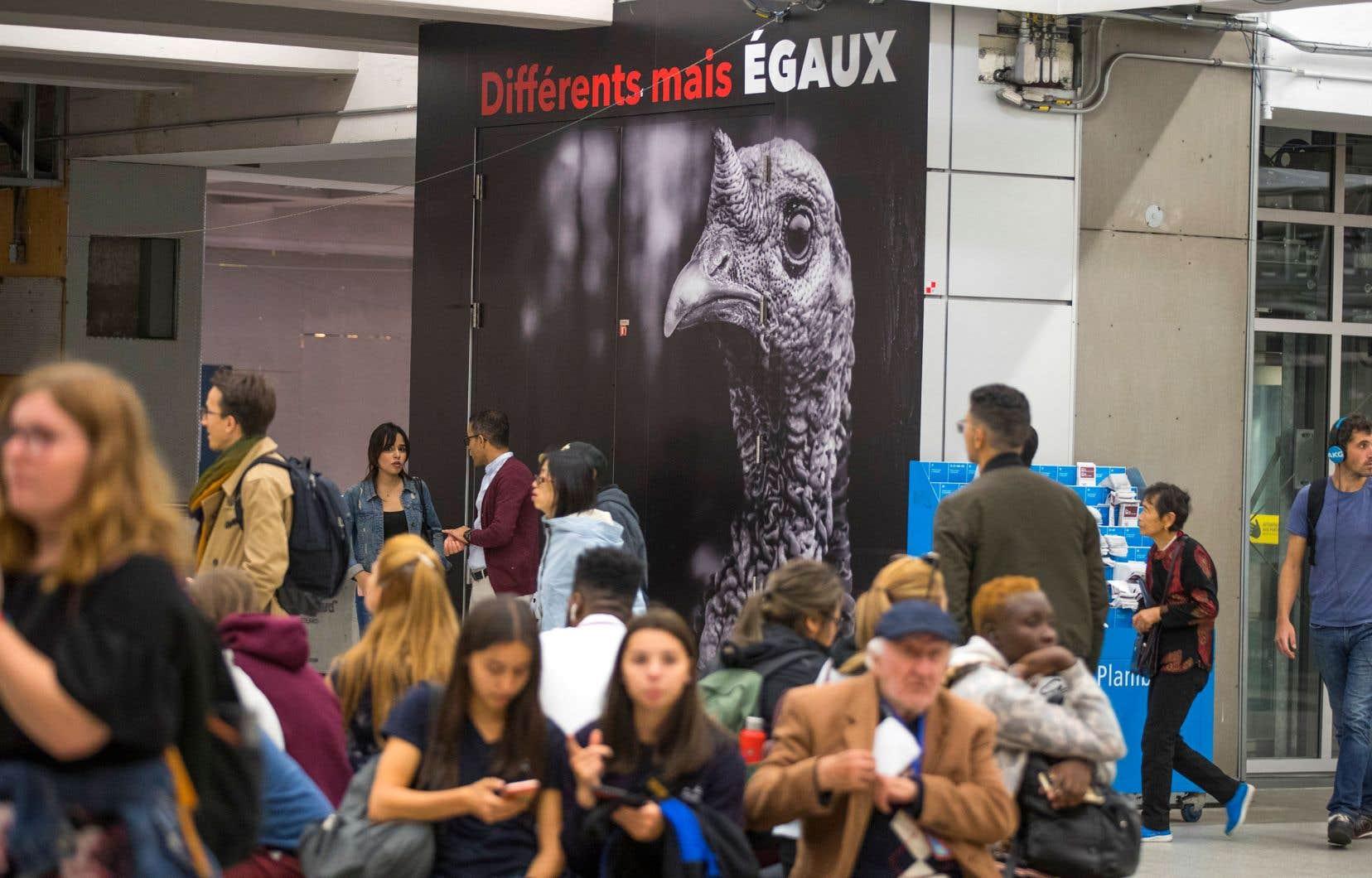 La station de métro Berri-UQAM est tapissée d'affiches de la campagne BeFairBeVegan.