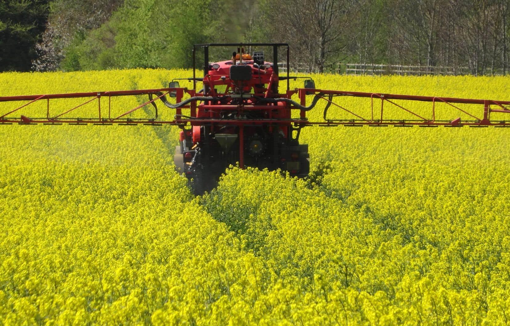 Présentement, seules cinq molécules inscrites au Code de gestion des pesticides requièrent une prescription agronomique pour pouvoir être utilisées.