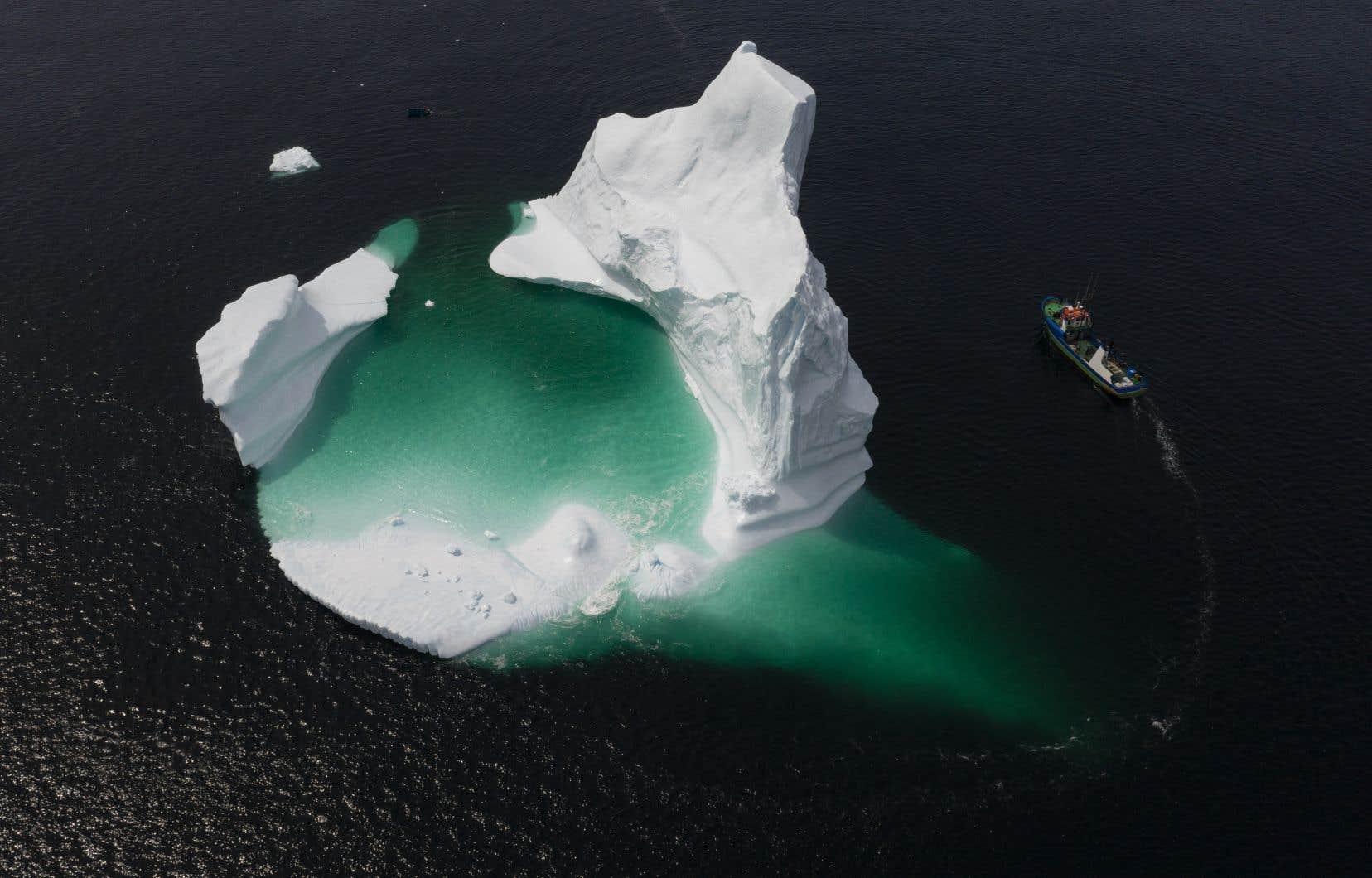 Tout indique que les maux qui frappent les océans risquent en outre de s'aggraver au cours des prochaines décennies.