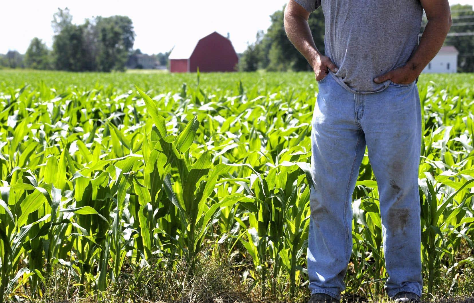 L'UPA préconise l'ajout de 60millions par année pour rémunérer les agriculteurs qui adopteraient des mesures écologiques.