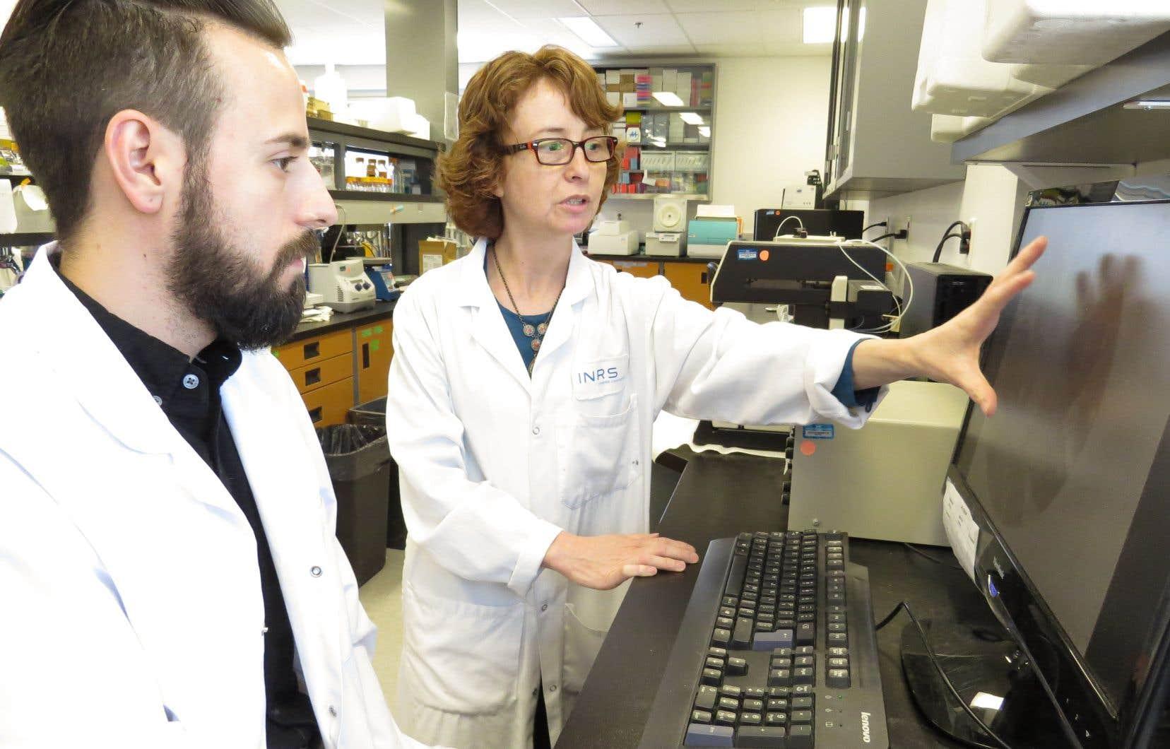 La professeure Maritza Jaramillo et son associé de recherche, Louis-Philippe Leroux