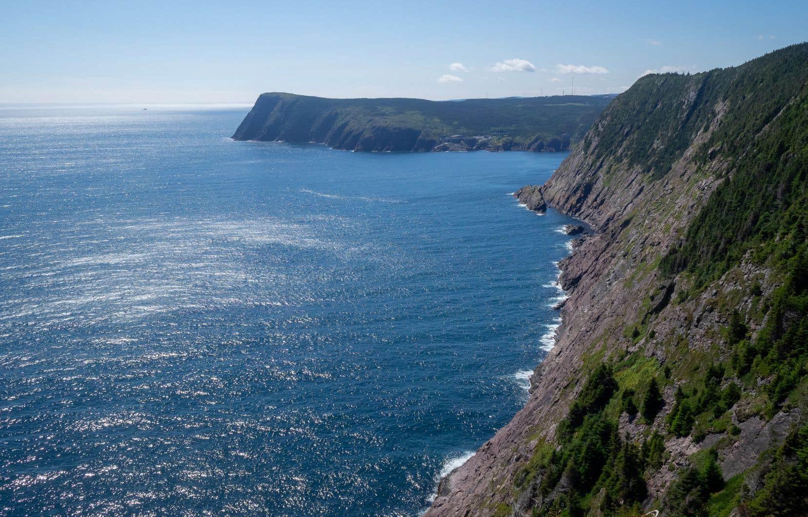 Le Cobbler's Path fait partie de l'East Coast Trail, un réseau de sentiers  de 336 km  qui célèbre  ses 25e ans.