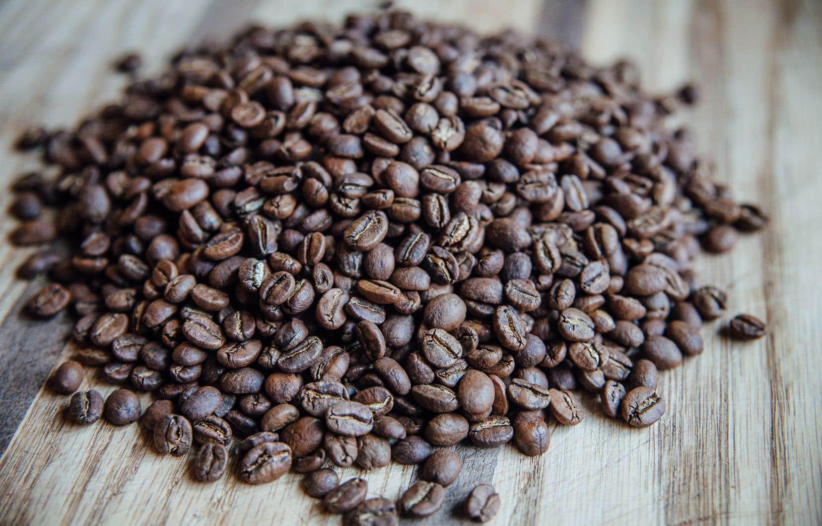 Pour Dave Plant, il est plutôt amusant de constater que son café, qui n'a toujours pas ouvert ses portes, soit devenu malgré lui un symbole d'opposition à la proposition du gouvernement caquiste.