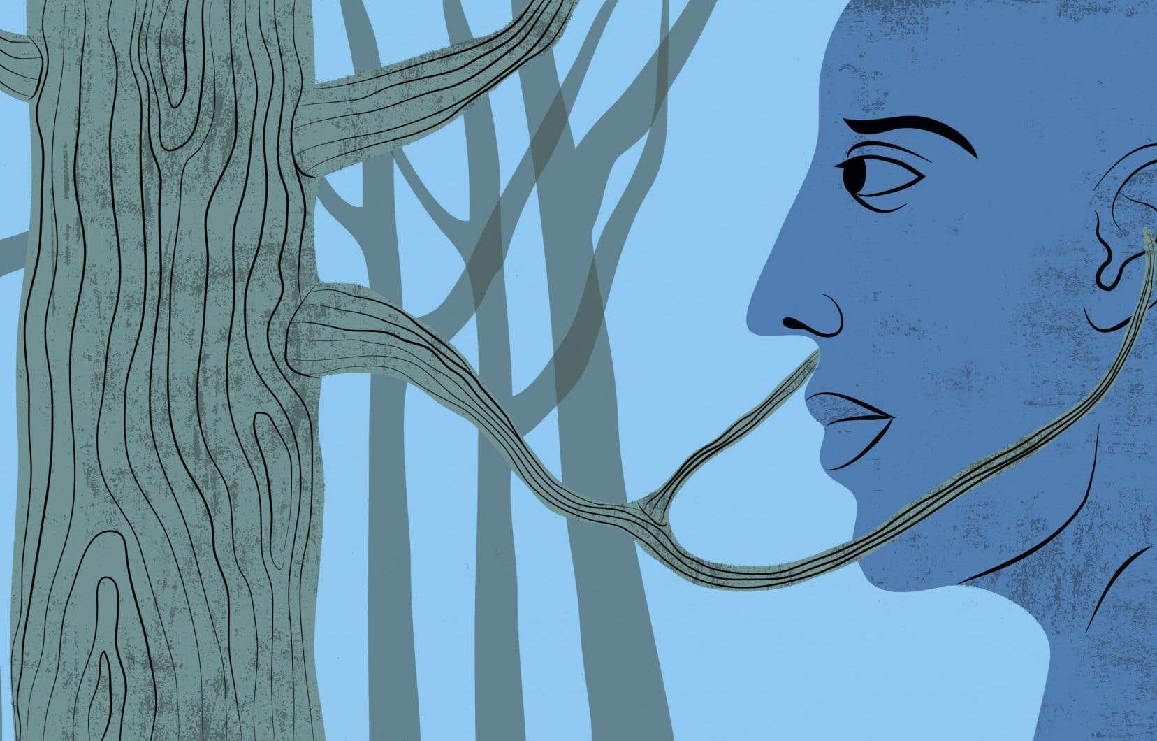 La forêt habite aussi nos imaginaires et nos sensibilités. La foresterie se pose dès lors comme une science qui demande non seulement de grandes connaissances et compétences dans la compréhension du milieu forestier, mais également dans celle de la complexité du milieu social dans lequel évoluent les forêts.