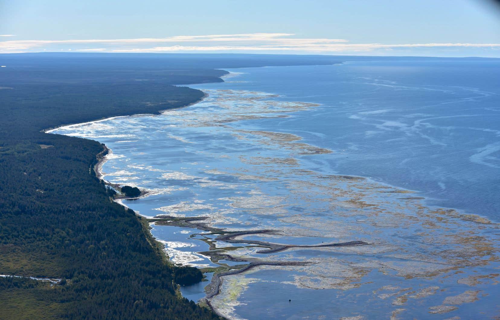 La plus grande île du Québec compterait des vestiges d'occupation du territoire remontant à plus de 3500 ans. Son littoral renferme des sites fossilifères jugés exceptionnels.