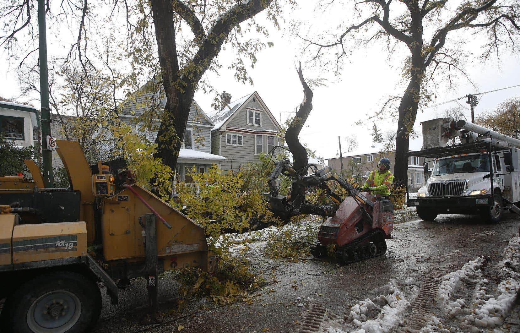 «Les effets de la tempête sont bien pires que ceux initialement prévus dans ces régions», a déclaré la directrice générale de Hydro-Manitoba, Jay Grewal, dans un communiqué, dimanche, précisant que les réparations prendraient plusieurs jours.