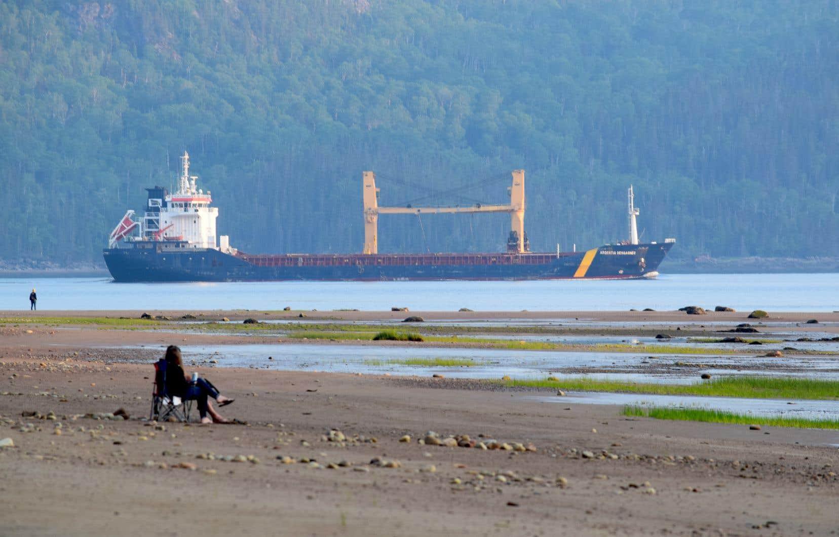 Le projet Énergie Saguenay entraînera une augmentation marquée du trafic maritime dans le parc marin du Saguenay-Saint-Laurent.