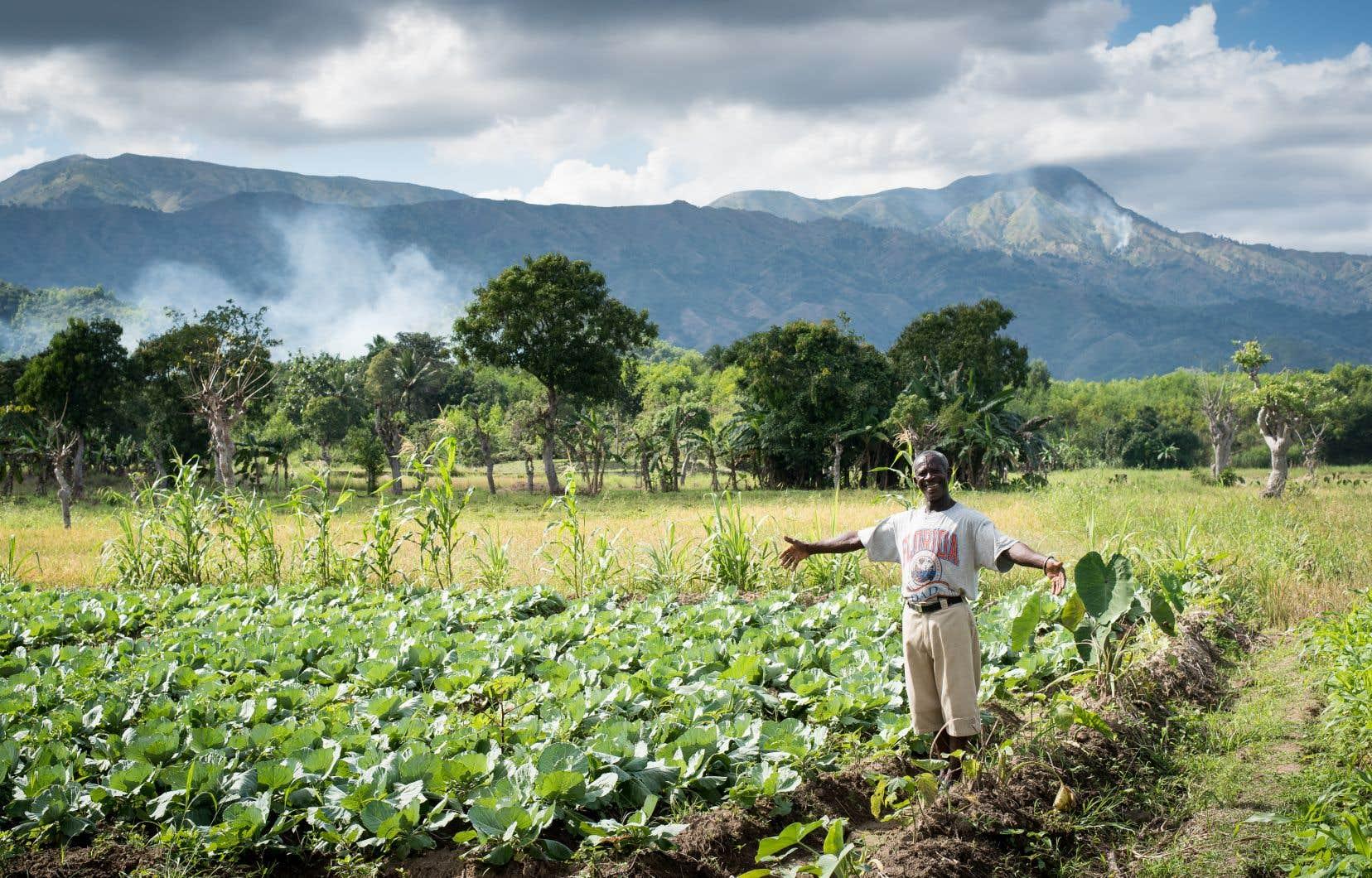 Le projet Jaden nou, se vant nou, «Notre jardin, notre sécurité alimentaire» en créole, aide les agriculteurs à s'adapter aux changements climatiques en délaissant le café au profit de plantes choisies pour leur grande adaptation et la sécurité alimentaire qu'elles offrent.