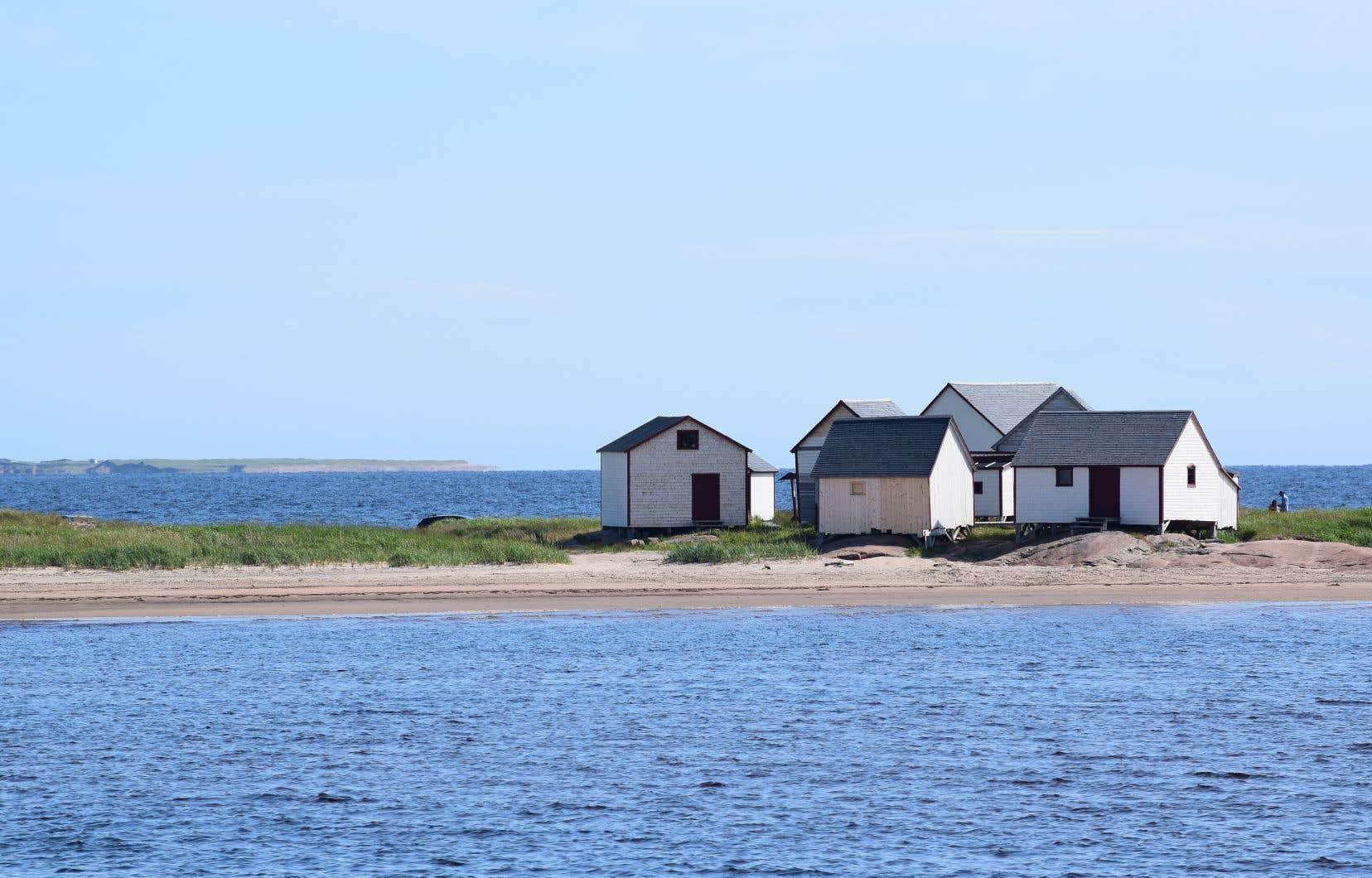 Denis Gilbert se dit donc préoccupé pour les années à venir, non seulement en ce qui concerne l'écosystème, mais aussi en ce qui concerne les communautés côtières affectées par l'érosion.