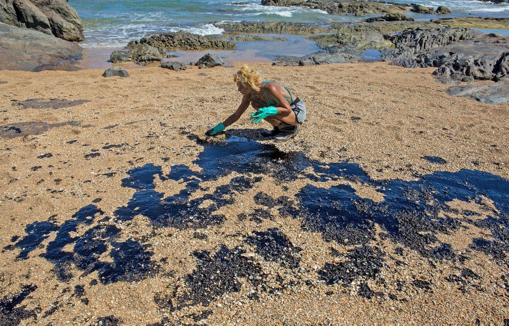 Depuis trois mois, cette marée noire a déjà souillé plus de 200 plages dans le nord-est du Brésil.
