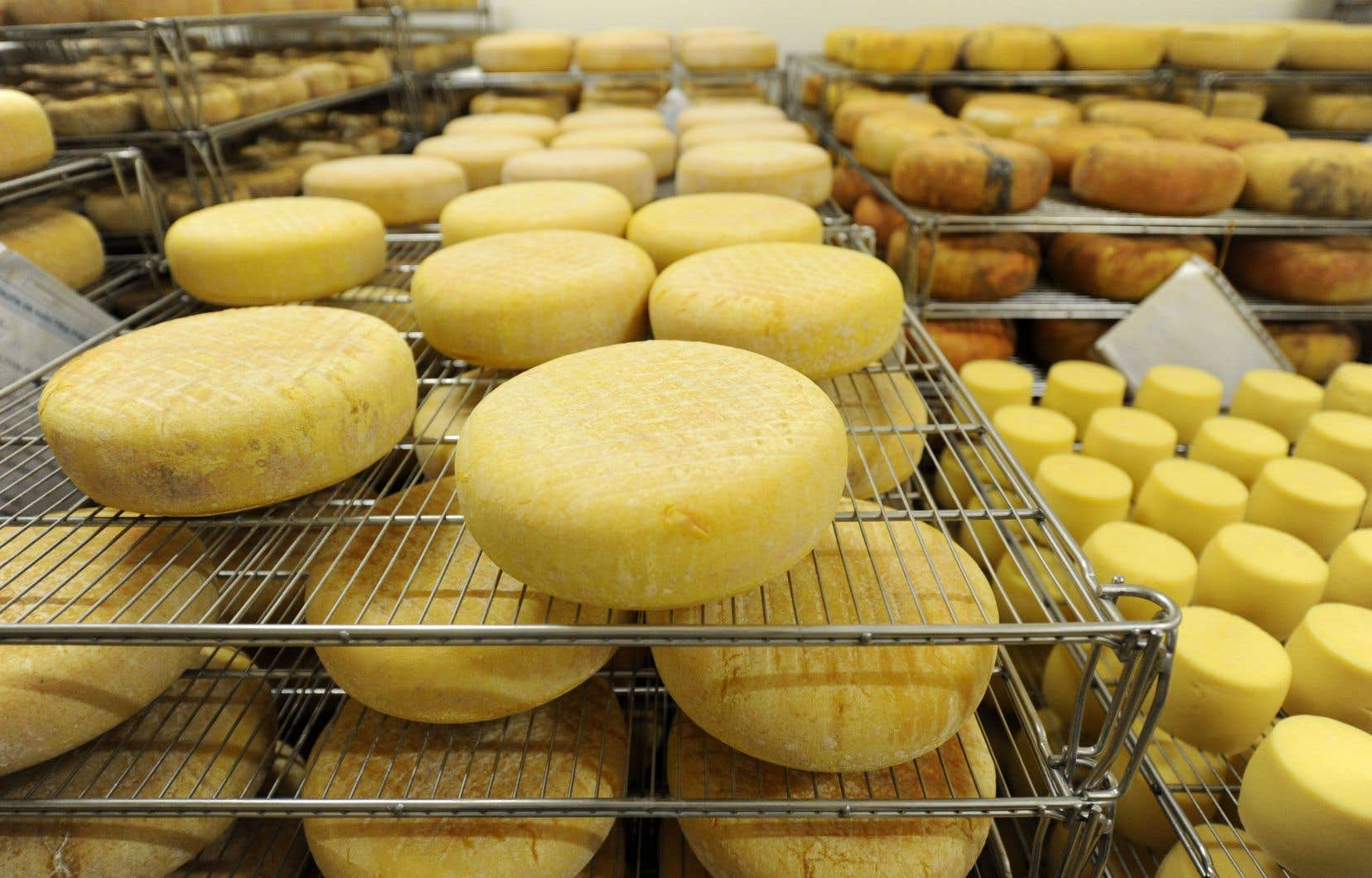 La hausse des importations de fromage en provenance d'Europe était l'un des points litigieux de l'Accord économique et commercial global entre le Canada et l'Union européenne, entré en vigueur le 21septembre 2017.