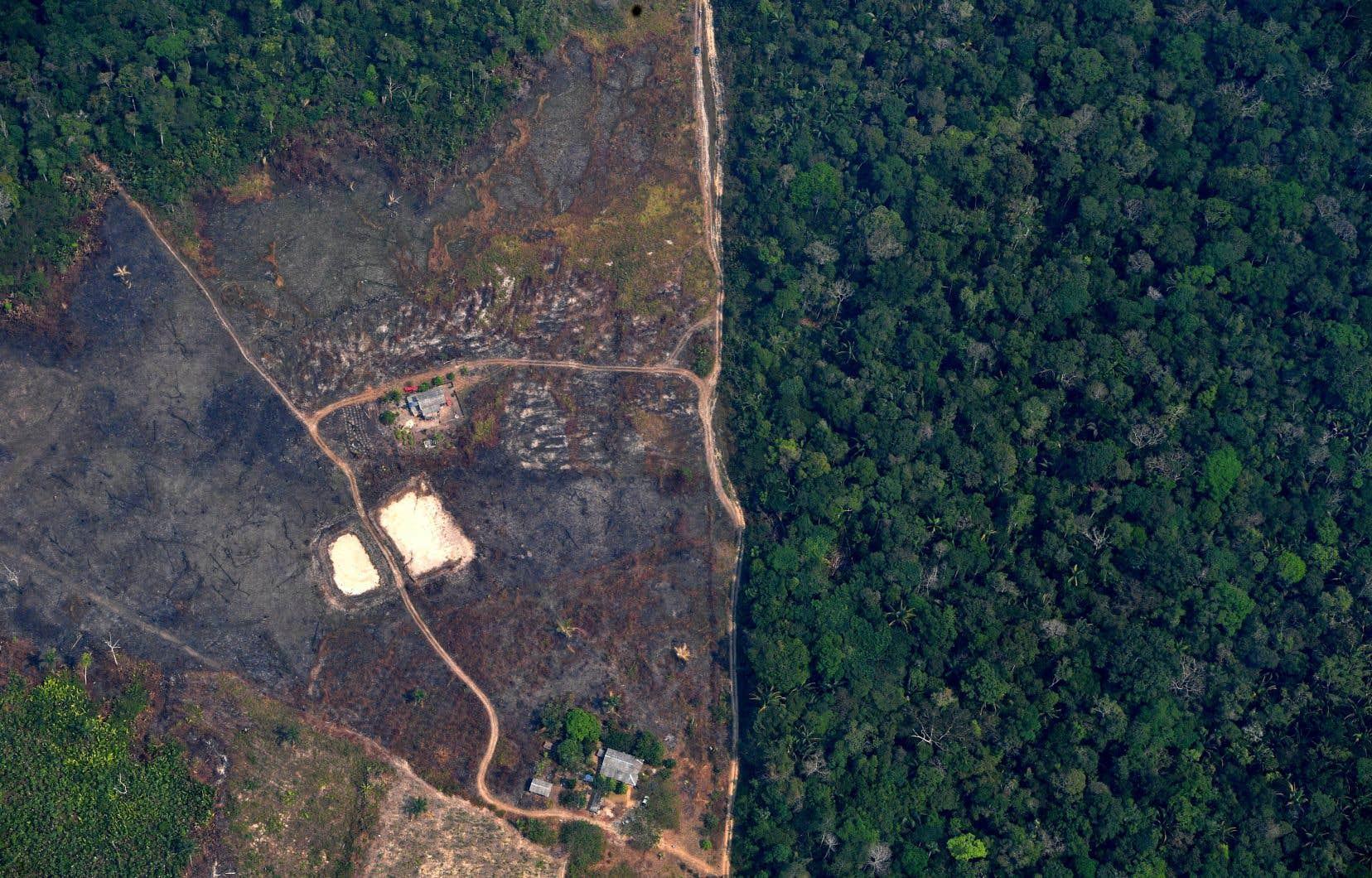 La déforestation entraîne également une recrudescence des foyers d'incendie en Amazonie, un grand nombre d'agriculteurs pratiquant le brûlis sur les zones déboisées pour pouvoir les cultiver.