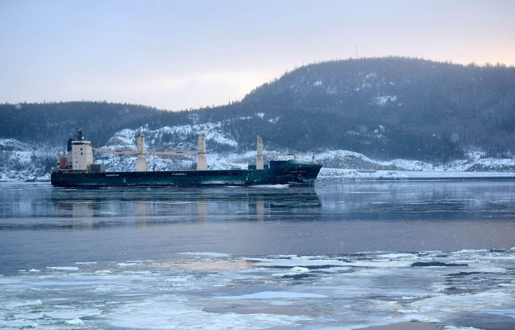 Un navire dans le fjord du Saguenay