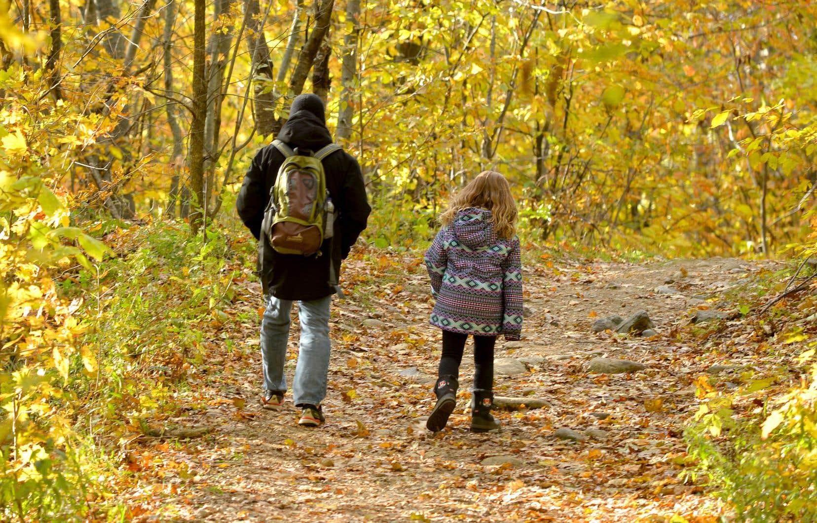 Montréal vient d'acheter 9,8 hectares de milieux naturels à Sainte-Anne-de-Bellevue.