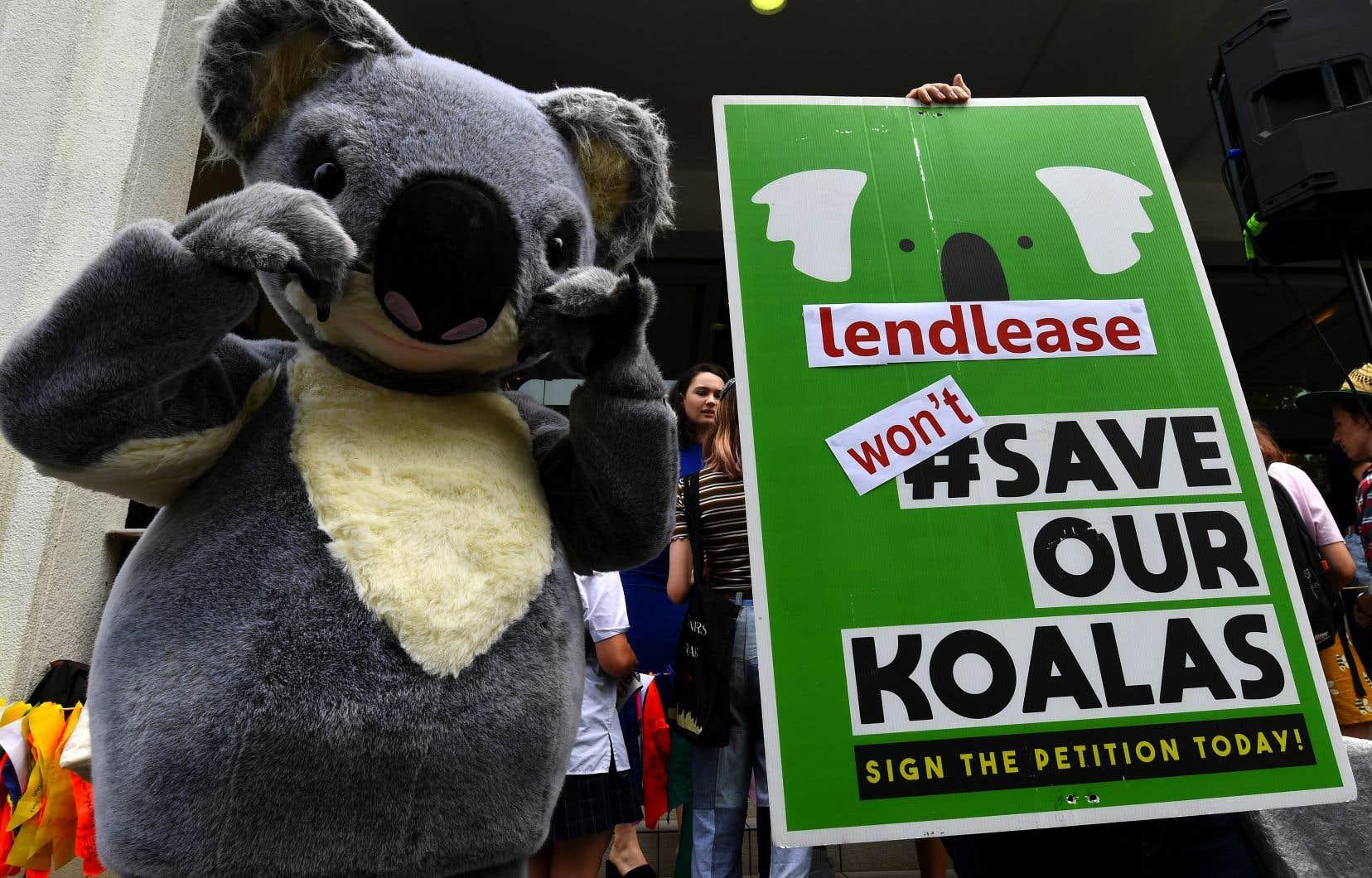 Des centaines de personnes se sont réunies à Sydney, dont certaines munies de pancartes «Sauvez nos koalas» en référence aux incendies qui ravagent la côte est de l'Australie.
