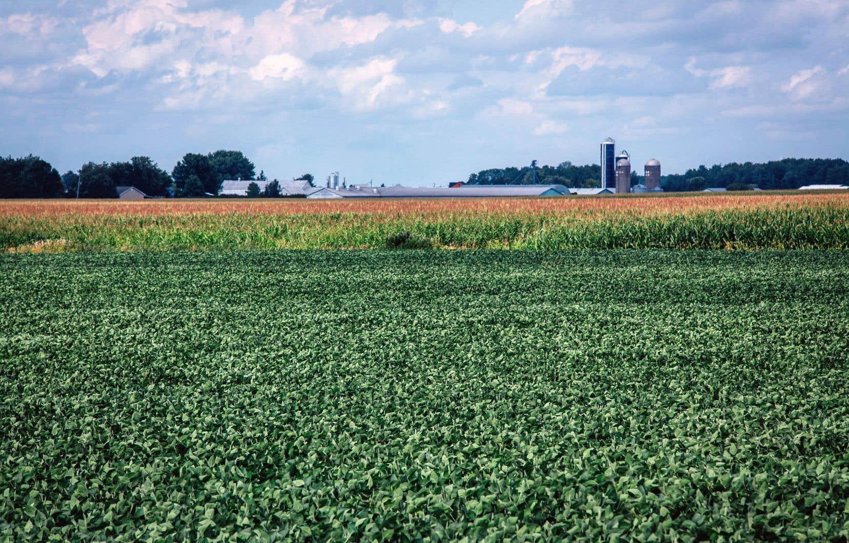 La nouvelle fiducie aura notamment pour mission de protéger les terres agricoles de la spéculation.