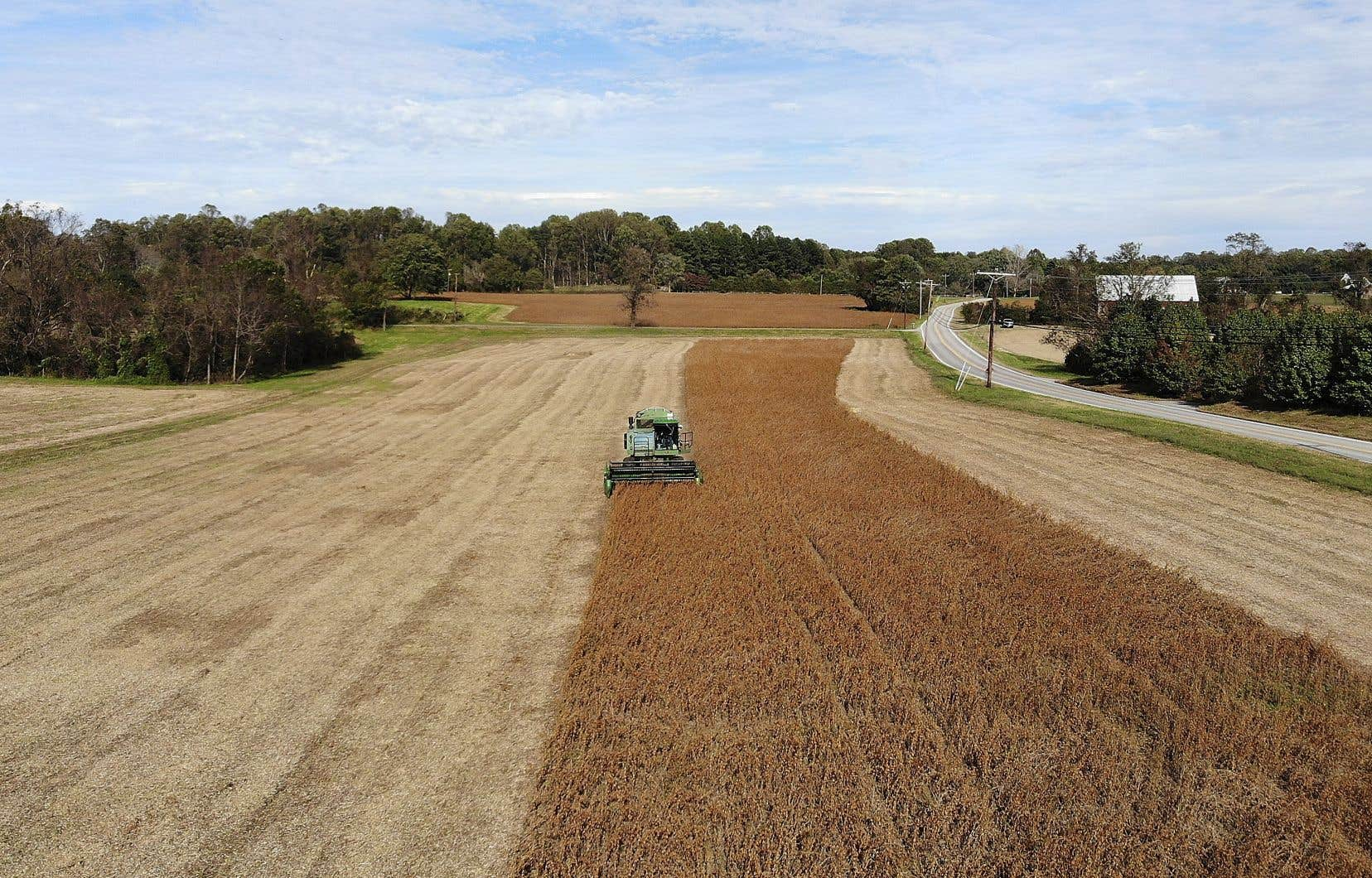 Les importations chinoises de soja américain ont bondi en novembre.