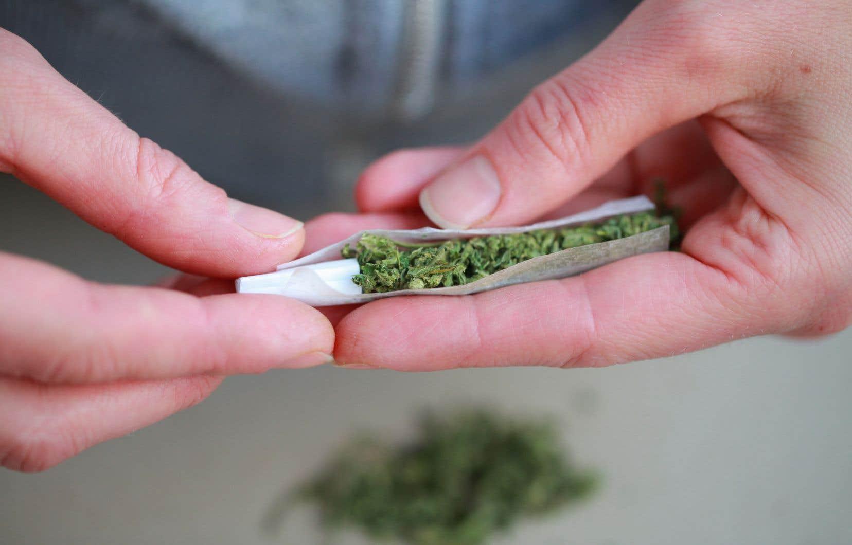 Jeff Walker, gestionnaire stratégique principal de la CAA,affirme que certains jeunes sont encore portés à penser que le cannabis n'altère en rien leurs facultés de conduite.