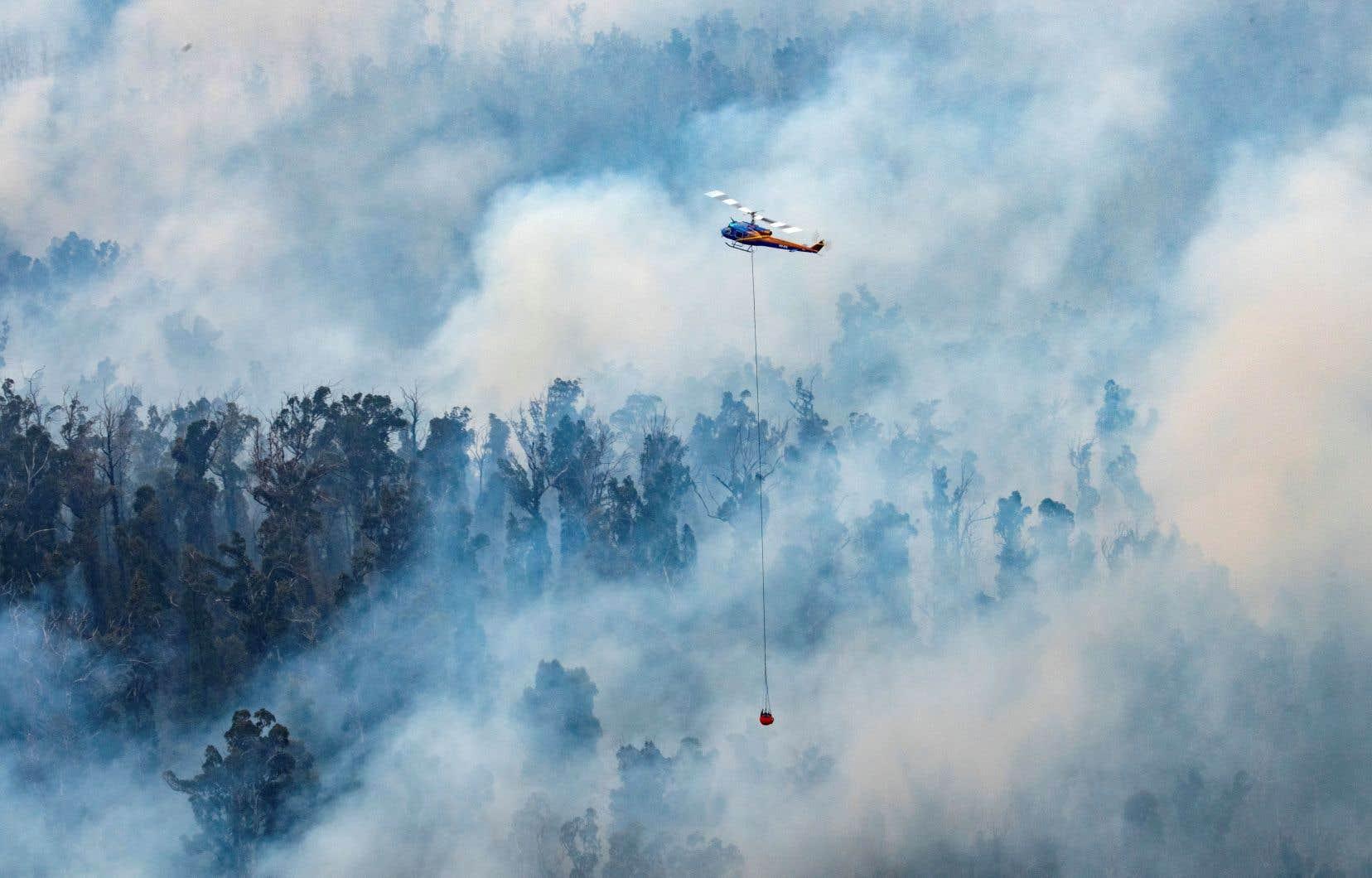 Les pompiers aériens combattent les incendies de forêt à l'aide d'hélicoptères, comme celui-ci aperçu lundi dans la région d'East Gippsland, dans l'État de Victoria.
