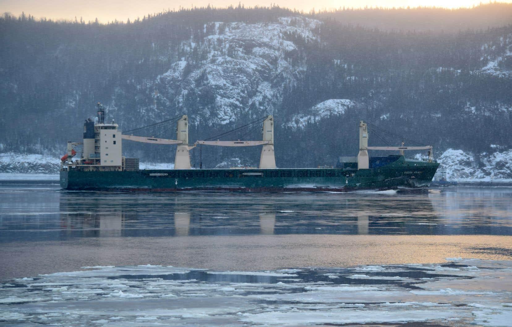 Les navires devront respecter la norme canadienne — plus sévère que celle de l'Organisation maritime internationale —, mais les armateurs pourront recourir au système d'épuration des gaz d'échappement.