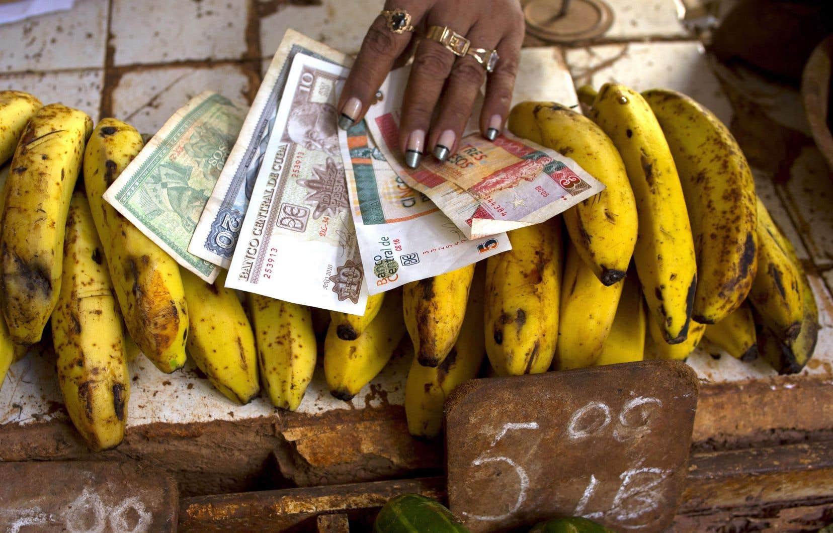 LeCUC (les deux billets à droite sur la photo), devise alignée sur le dollar américain qui sert aux échanges dans le tourisme et pour l'achat des biens d'équipement des ménages à Cuba, devrait disparaître prochainement.