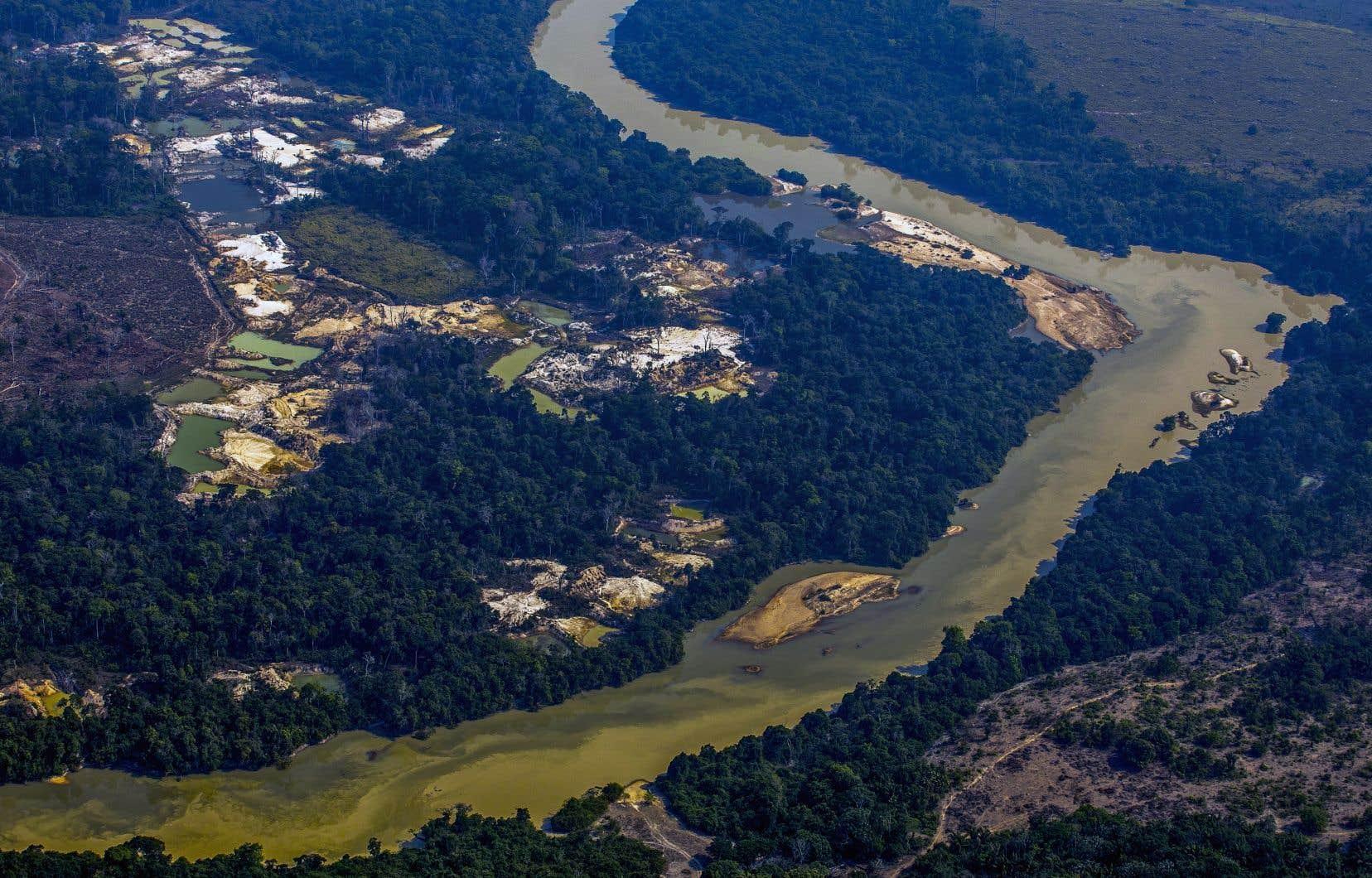 L'ouverture aux activités économiques des terres indigènes a accru ces derniers mois, selon des représentants de ces communautés indigènes et d'ONG, la violence et la pression des entreprises minières et d'exploitation du bois en Amazonie.