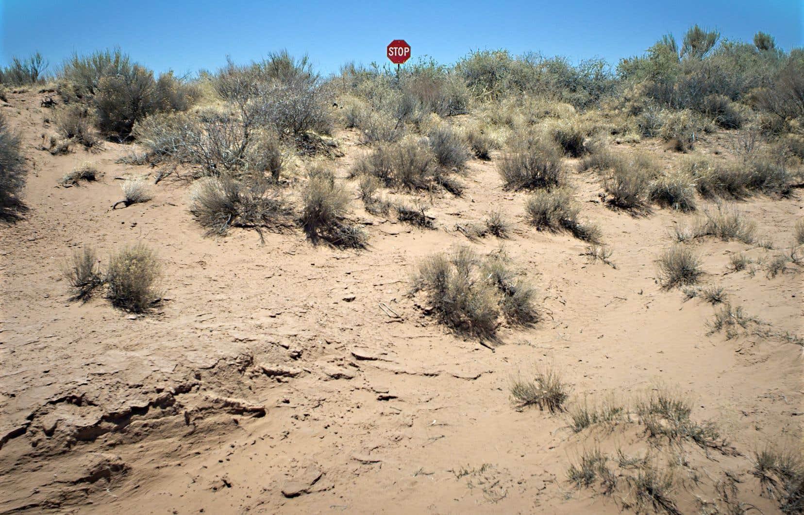 En une démonstration additionnelle de son imagination débridée, Sophie Bédard Marcotte intègre la parole de Chantal Akerman lors d'une séquence hautement symbolique de traversée du désert. Émanant des cieux, sa voix vient rassurer, éclairer, remettre en perspective…