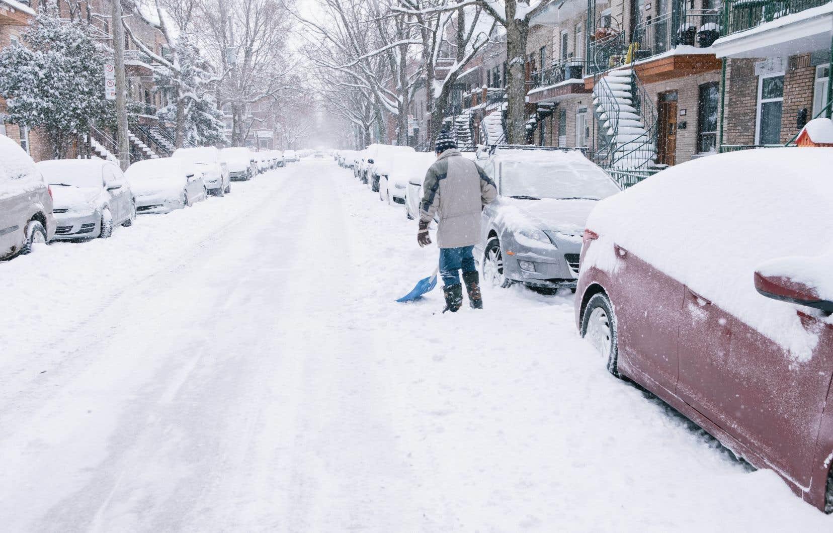 <p>Dimanche matin, les véhicules, les arbres et les voies de circulation étaient recouverts d'une épaisse couche de neige poudreuse.</p>