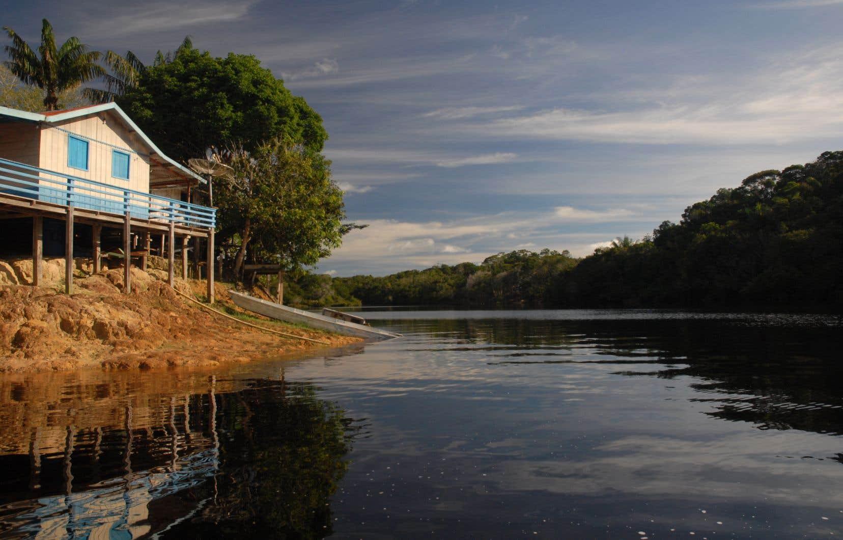 Une maison sur pilotis de l'une des nombreuses communautés jalonnant le rio Negro