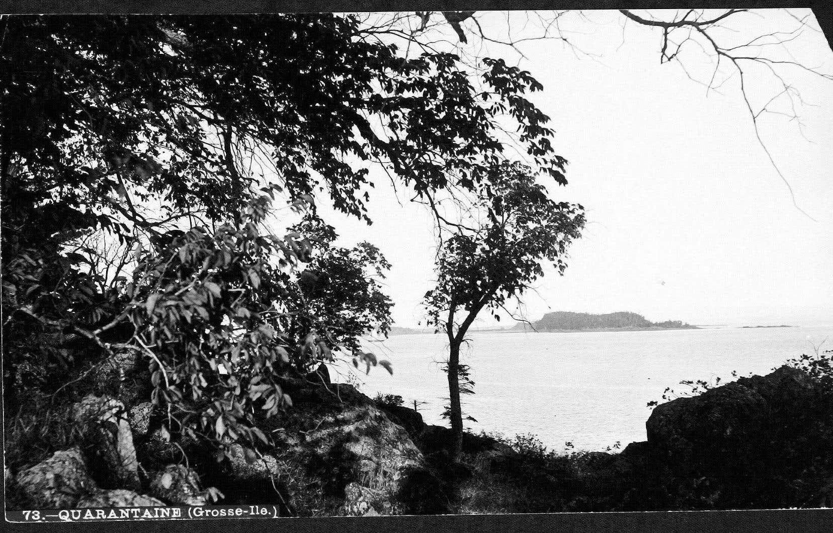 À partir des années 1860, alors que le gouvernement prend le relais de l'armée, jusqu'après la Première Guerre mondiale, Grosse-Île a été la principale zone de quarantaine pour l'immigration au Canada.