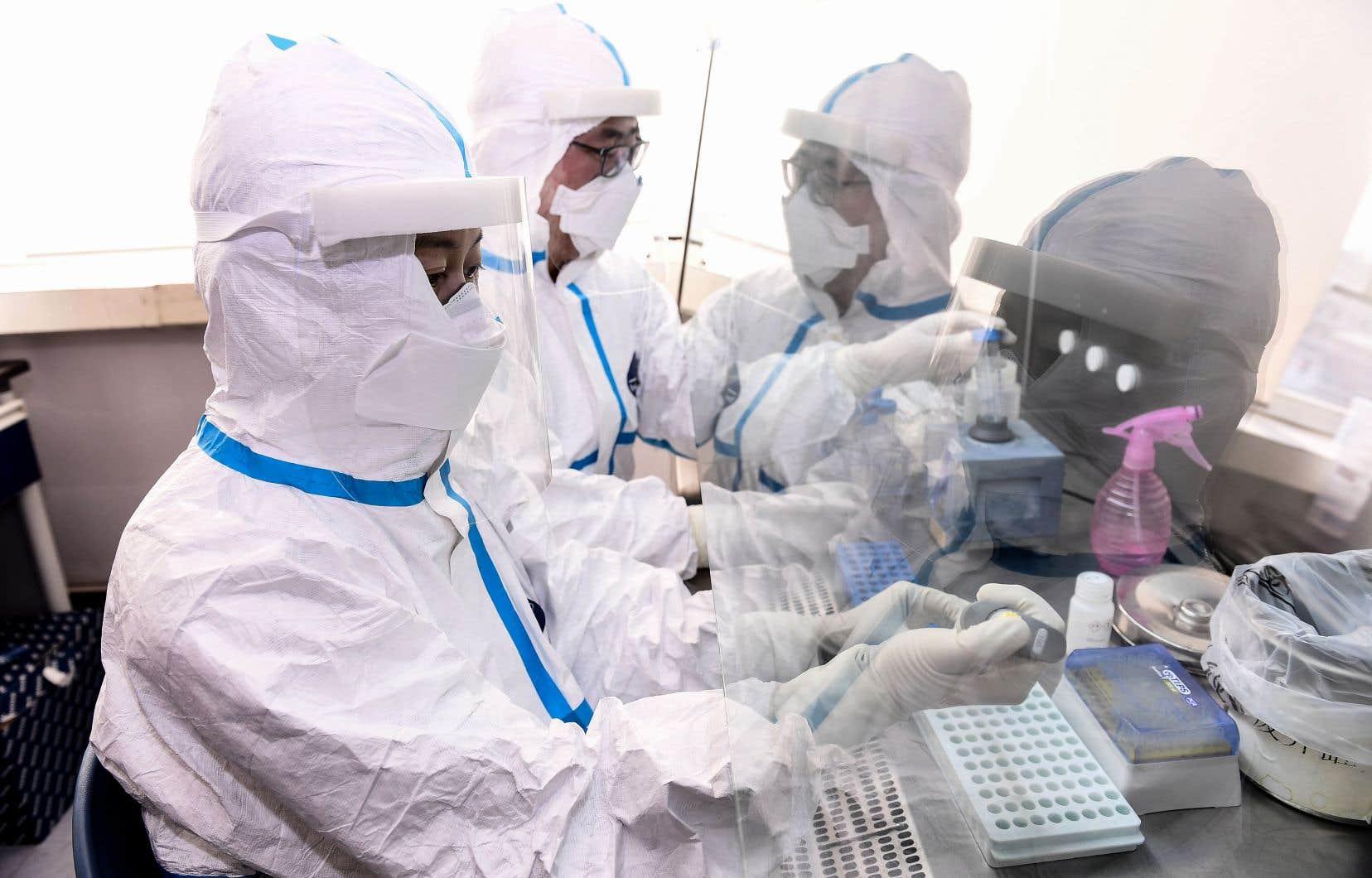 Une étude scientifique a démontré l'efficacité d'un nouvel antiviral contre le coronavirus MERS-CoV chez le singe.