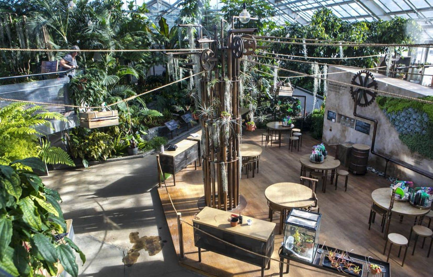 L'exposition «Les plantes étranges de Madame Z» au Jardin botanique