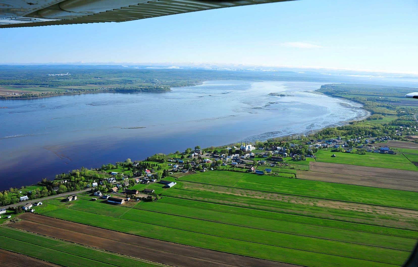 Les interventions proposées pour soigner le fleuve Saint-Laurent auraient également des effets heureux sur la biodiversité, disent les responsables du rapport.