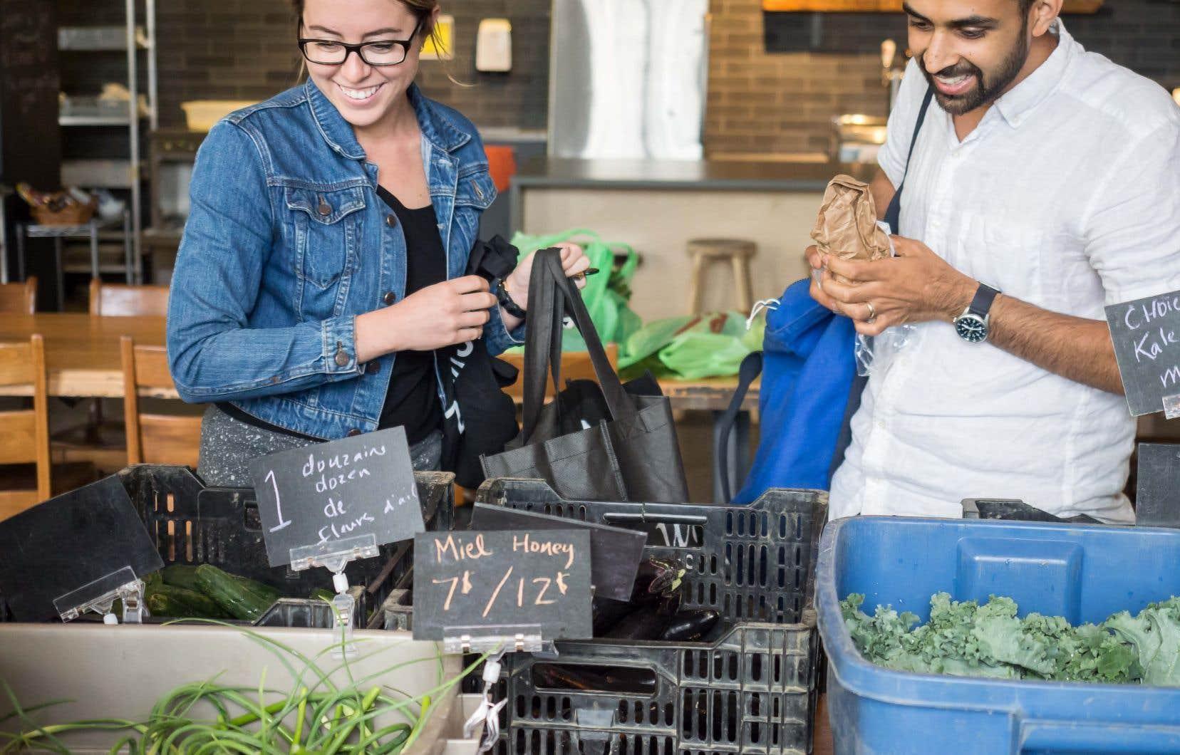 Depuis quelques années, Moment Factory accueille un point de livraison de paniers de légumes bios et locaux pour ses employés.