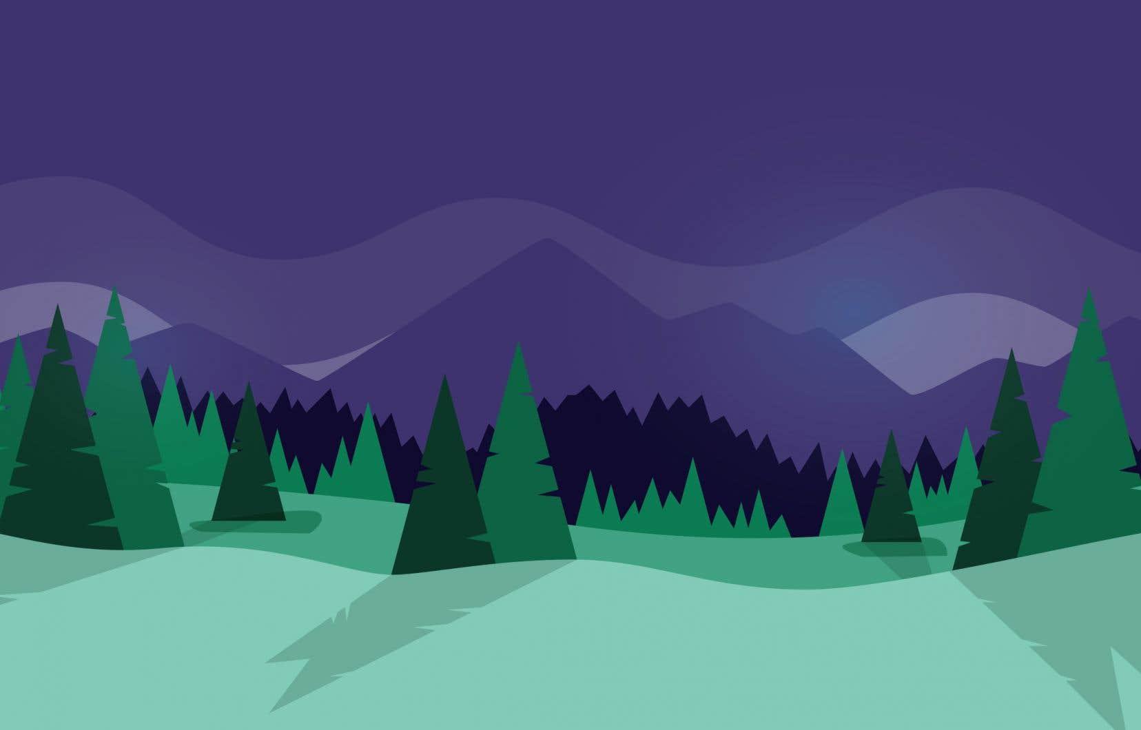 À elles seules, les forêts du Québec pourraient permettre de réduire les gaz à effet de serre de 10millions de tonnes.