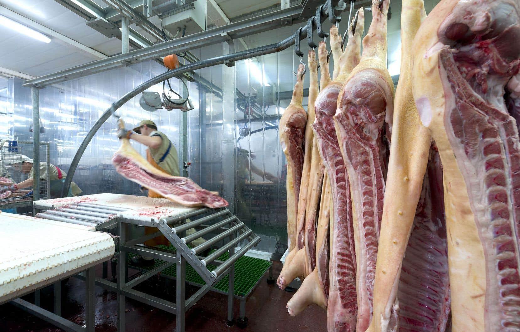 L'usine, qui fait l'abattage et la découpe de porcs, compte environ 1000 employés au total.