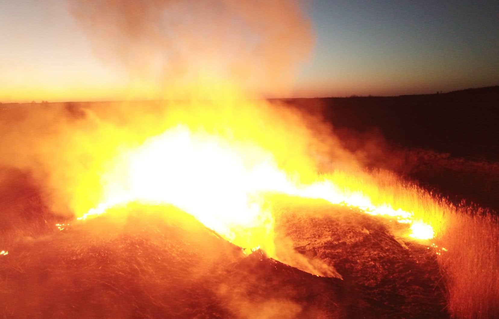 Les pompiers continuaient lundi de lutter contre les flammes qui s'étendaient sur environ 20 hectares dans la zone d'exclusion entourant la centrale de Tchernobyl, en Ukraine.
