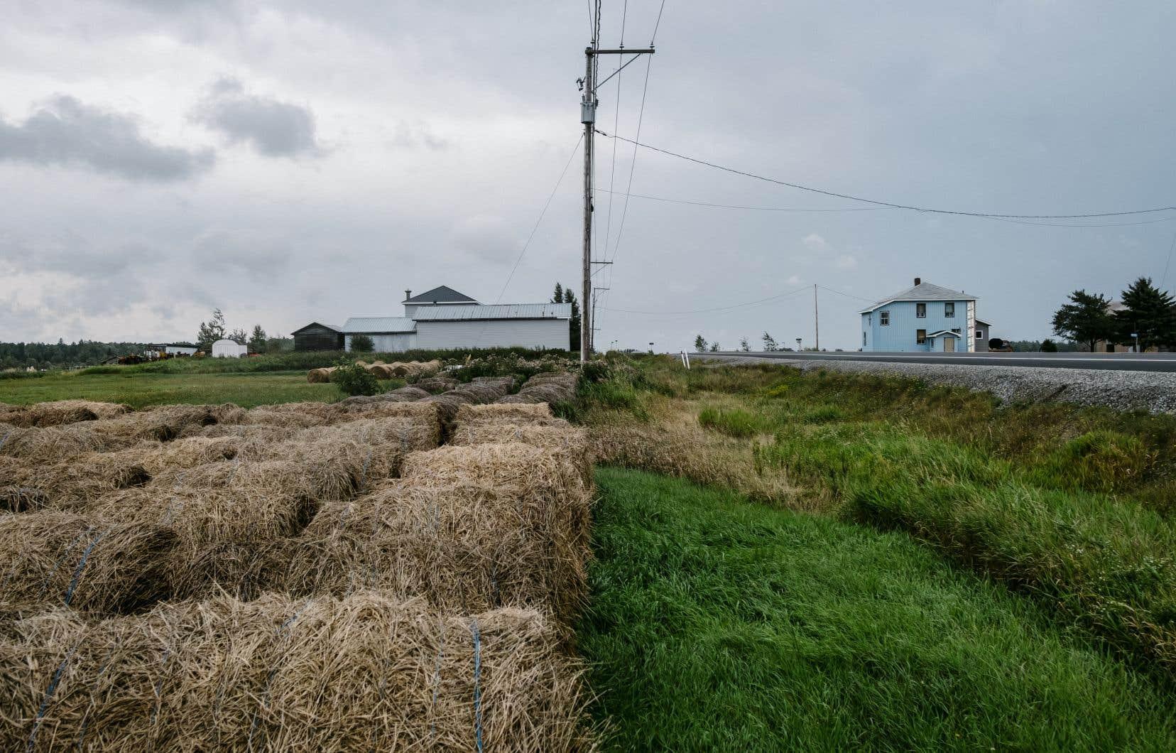 «Contrairement aux fabricants de textiles ou de masques chirurgicaux, qui ont pu aller construire des usines dans les pays où la main-d'oeuvre est moins chère, les terres agricoles ne sont pas délocalisables», écrit l'auteur.