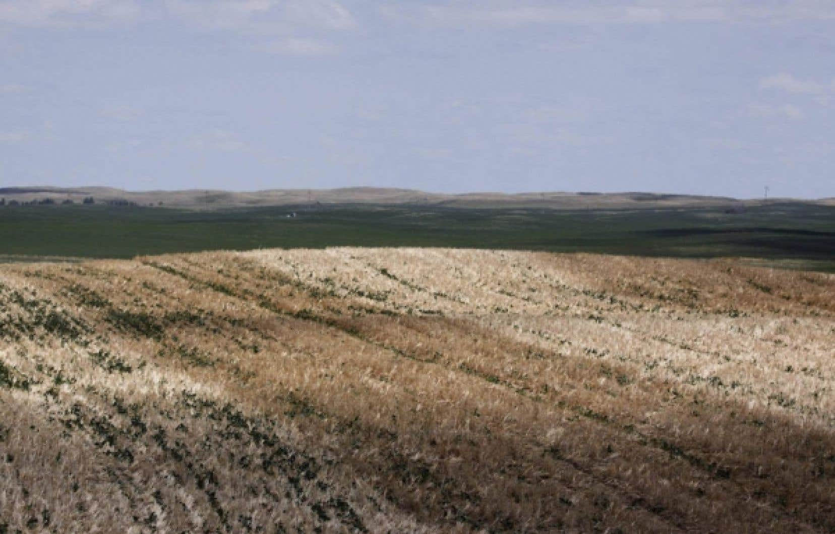 La Table ronde nationale sur l'économie et l'environnement estime que le Canada n'est pas très avancé malgré les effets déjà apparents des changements climatiques, comme les sécheresses dans les Prairies.<br />