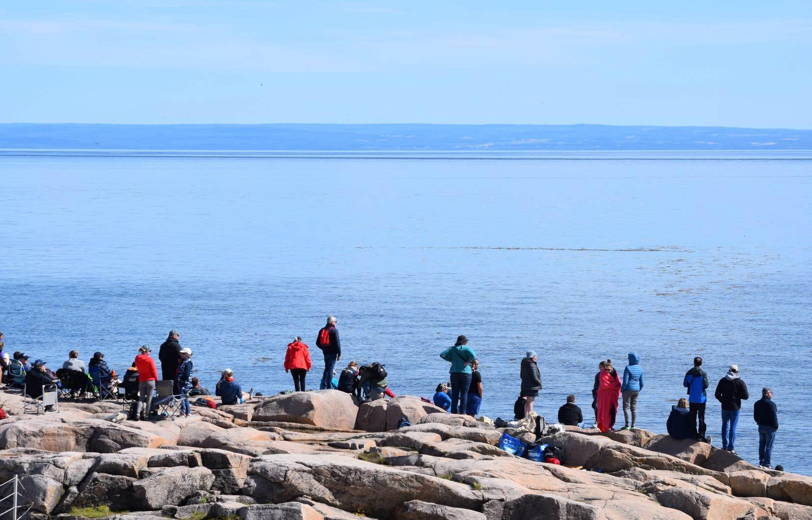 Le site fédéral de Cap-de-Bon-Désir, sur la Côte-Nord, est très fréquenté par les touristes qui veulent observer des baleines.