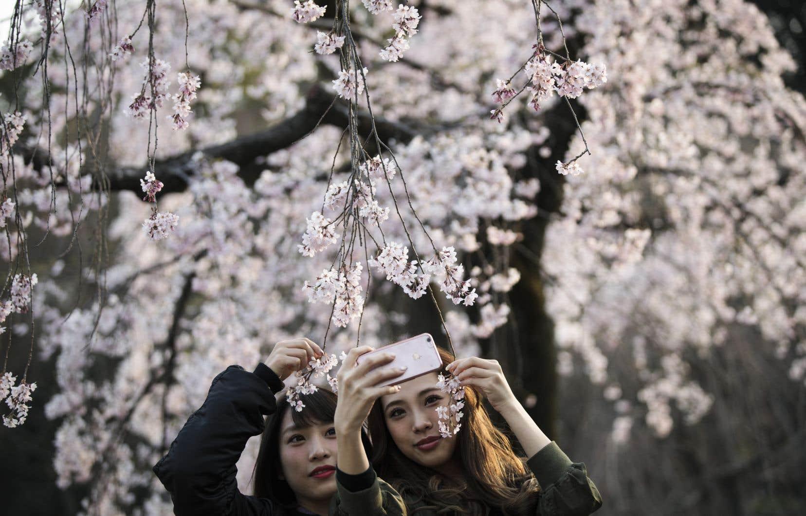 Un hommage sensible à un certain Japon, empreint de délicatesse et de douceur. Il existe un autre Japon, mais l'écrivaine a choisi de le laisser à d'autres.