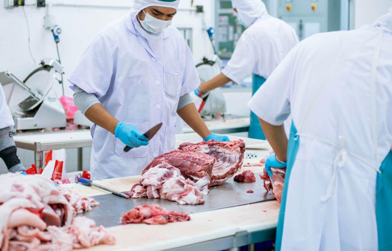 En 2019, environ 3,3 millions de bovins ont été abattus au Canada dans les établissements inspectés par les gouvernements fédéral et provinciaux.
