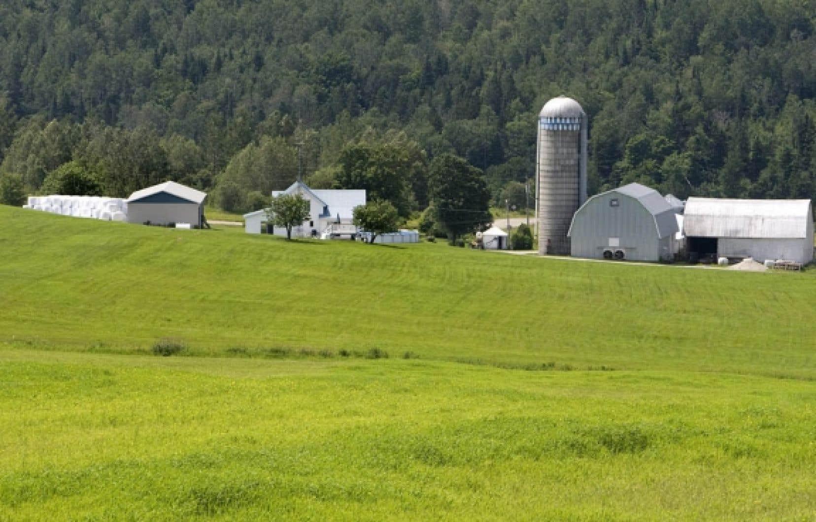 Les agriculteurs ne veulent pas jouer à la roulette russe avec l'avenir de leur ferme.<br /> <br />