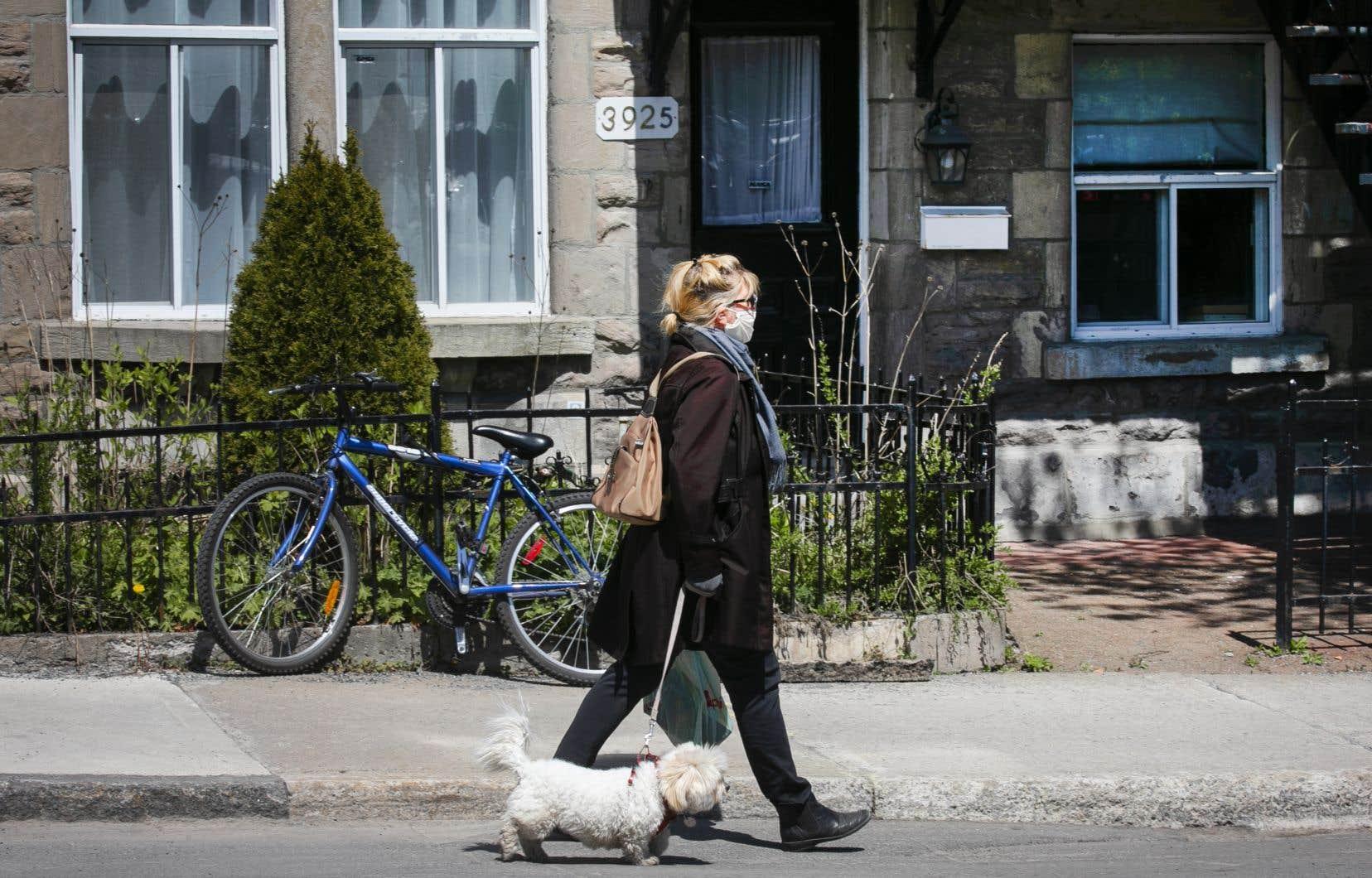 Des tronçons des rues Beaubien et Masson et du boulevard Saint-Laurent seront aménagés en voies partagées de type «transit mall» pour faciliter la distanciation physique.