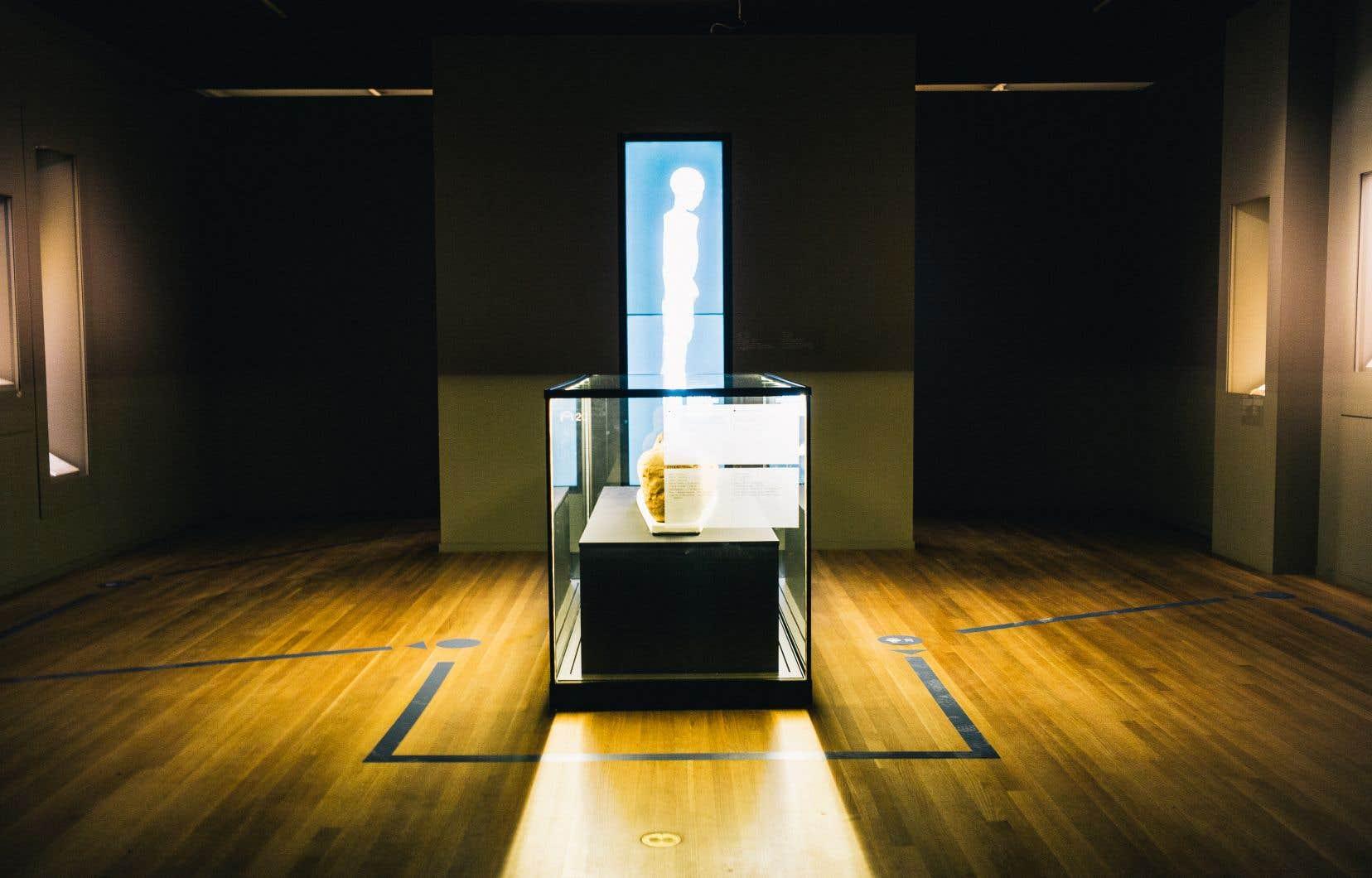 Le Musée des beaux-arts de Montréal reprend là où il s'est arrêté en mars : sur le bord du Nil, avec l'exposition «Momies égyptiennes». Des flèches et des pastilles au sol indiquent, tous les deux mètres, où poser les pieds, où attendre, comment contourner les oeuvres…